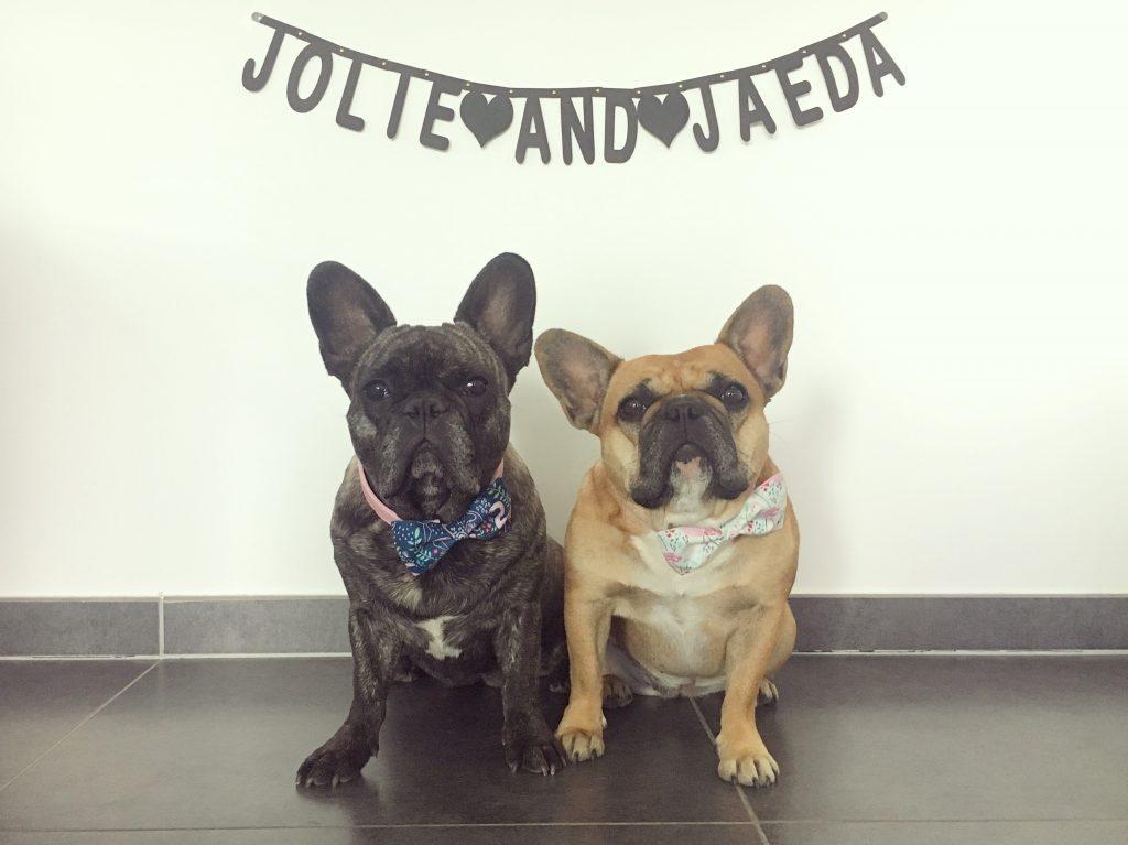 <p>Jolie & Jaeda</p>