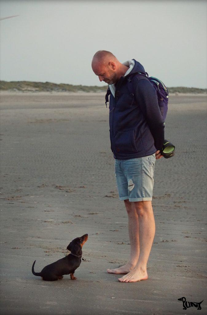Plint op het strand