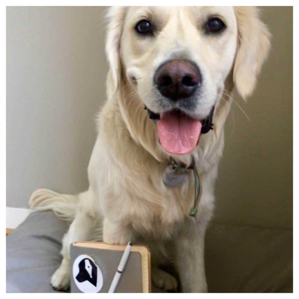 blogger bij The Dog Pen