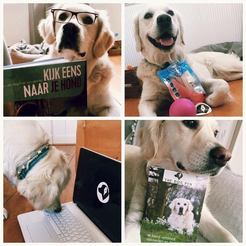 Bloggen bij The Dog Pen