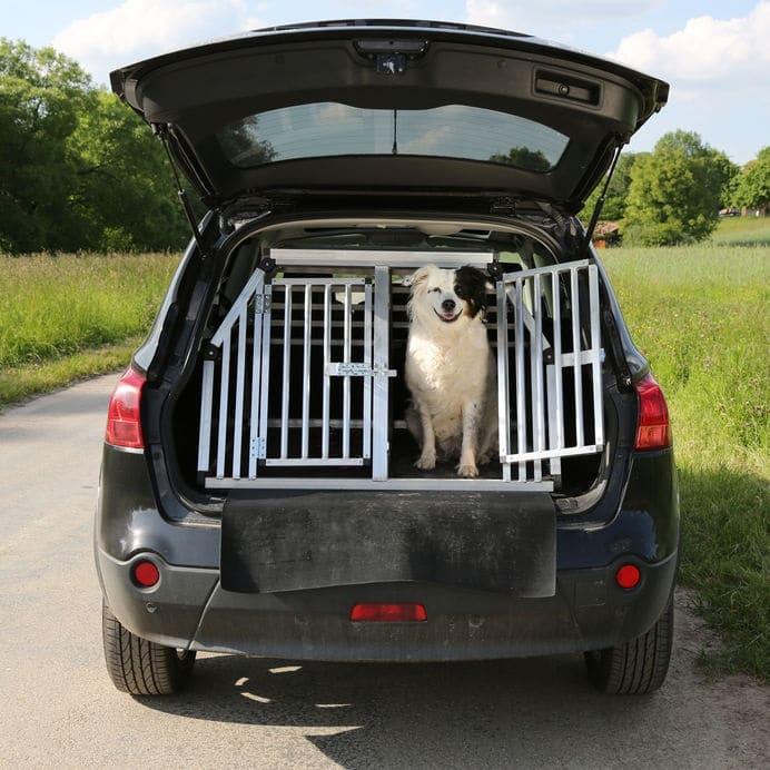 Honden autobench
