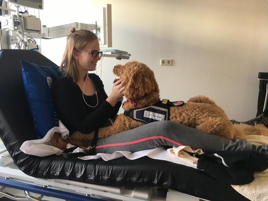 mindy met hulphond op ziekenhuisbed