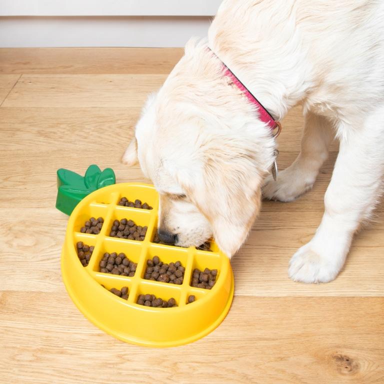 Hondenvoerbak Ananas