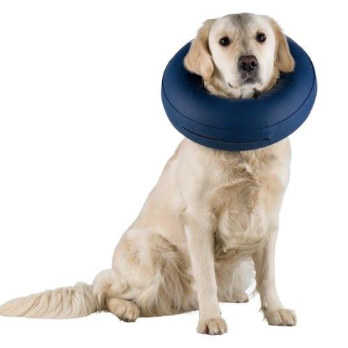 Opblaasbare kraag voor de hond