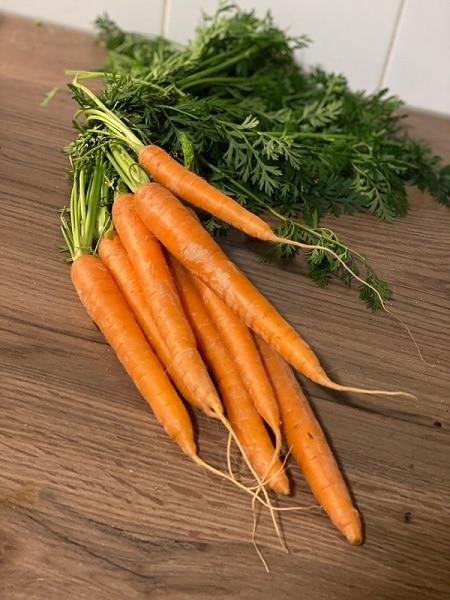 wortelsoep bij diarree