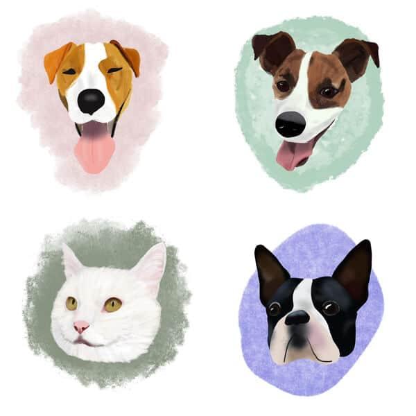 dier op papier voorbeelden hond kat