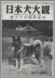 historie Akita