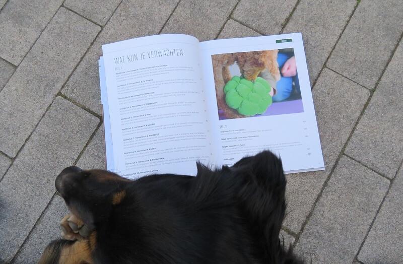 Hersenwerk voor honden boek