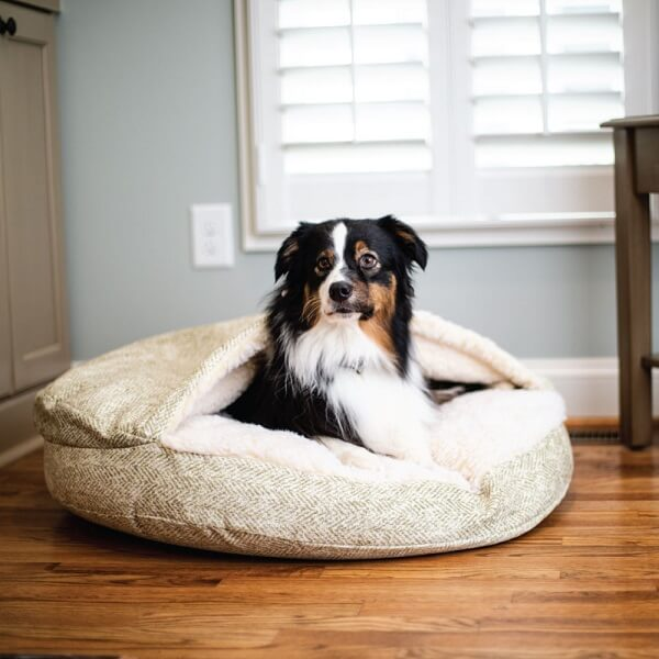 Hondenmand Cosy Cave rond met Border Collie