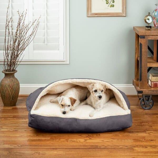 stijlvolle hondenmanden voor 2 honden