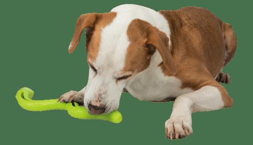 Voerspeeltjes hond Trixie slang